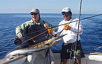 guatemala sailfish fishing