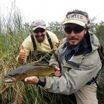 brown-trout-03-chile-visor
